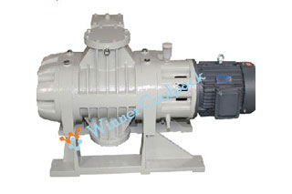 roots_vacuum_pump